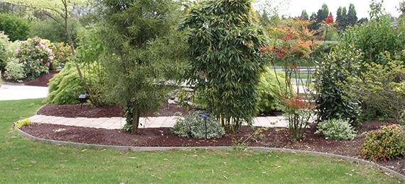 V g taux dj cr ation for Jardin anglais vegetaux