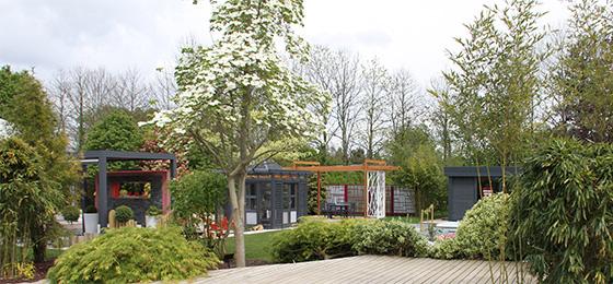 Ambiance jardin japonais dj cr ation for Ambiance jardin paysagiste