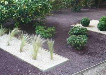 plantes et gazons