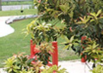 Ambiance jardin japonais dj cr ation for Mobilier japonais rennes