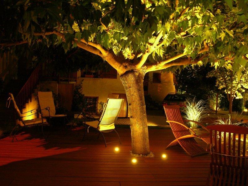 eclairage arbre et plantation dj cr ation. Black Bedroom Furniture Sets. Home Design Ideas