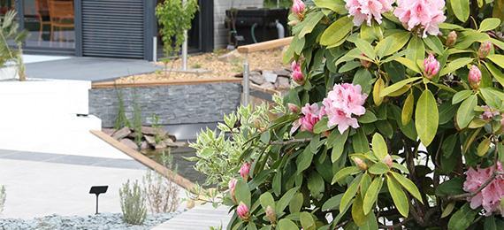 Jardin contemporain dj cr ation - Plantes filtrantes bassin rennes ...