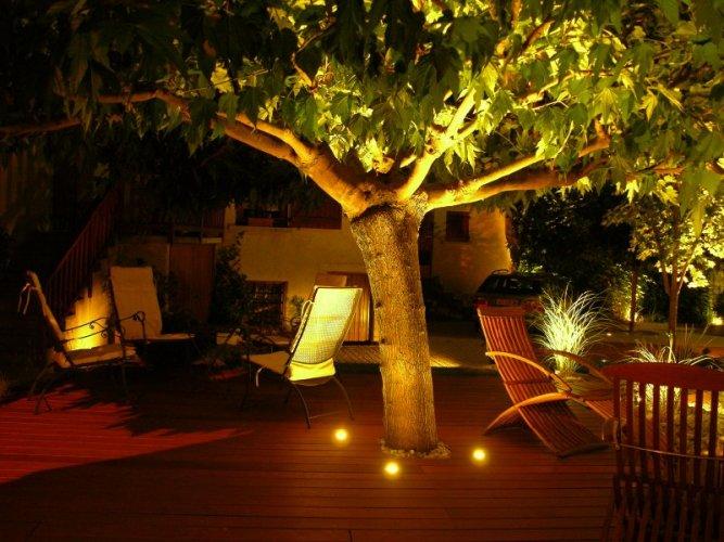 Eclairage arbre et plantation dj cr ation for Eclairage jardin terrasse